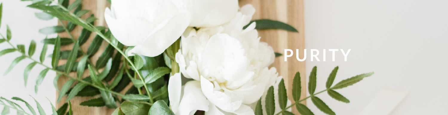 Purity header image